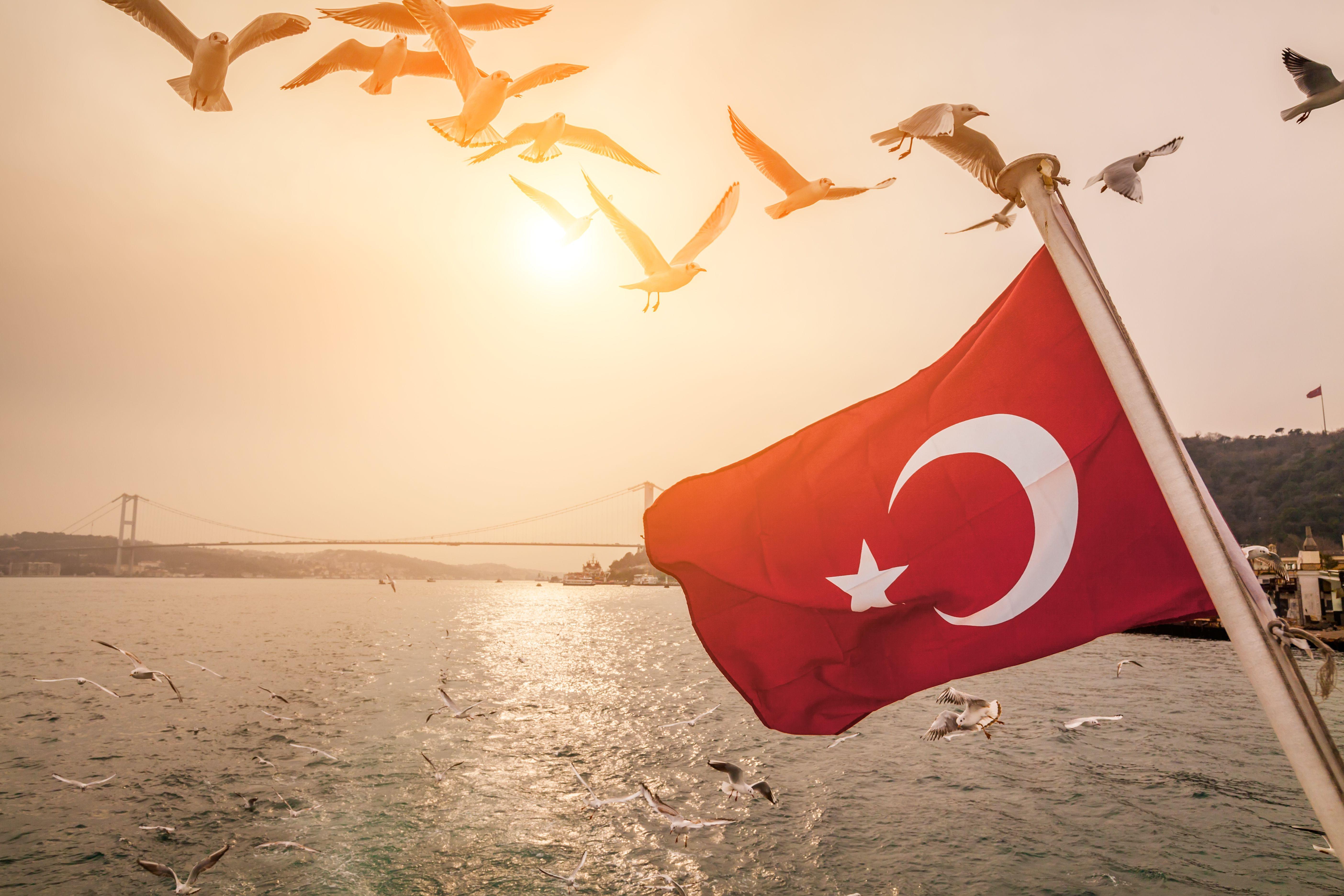 Turkish flag on a ship on the background of the Bosphorus Bridge