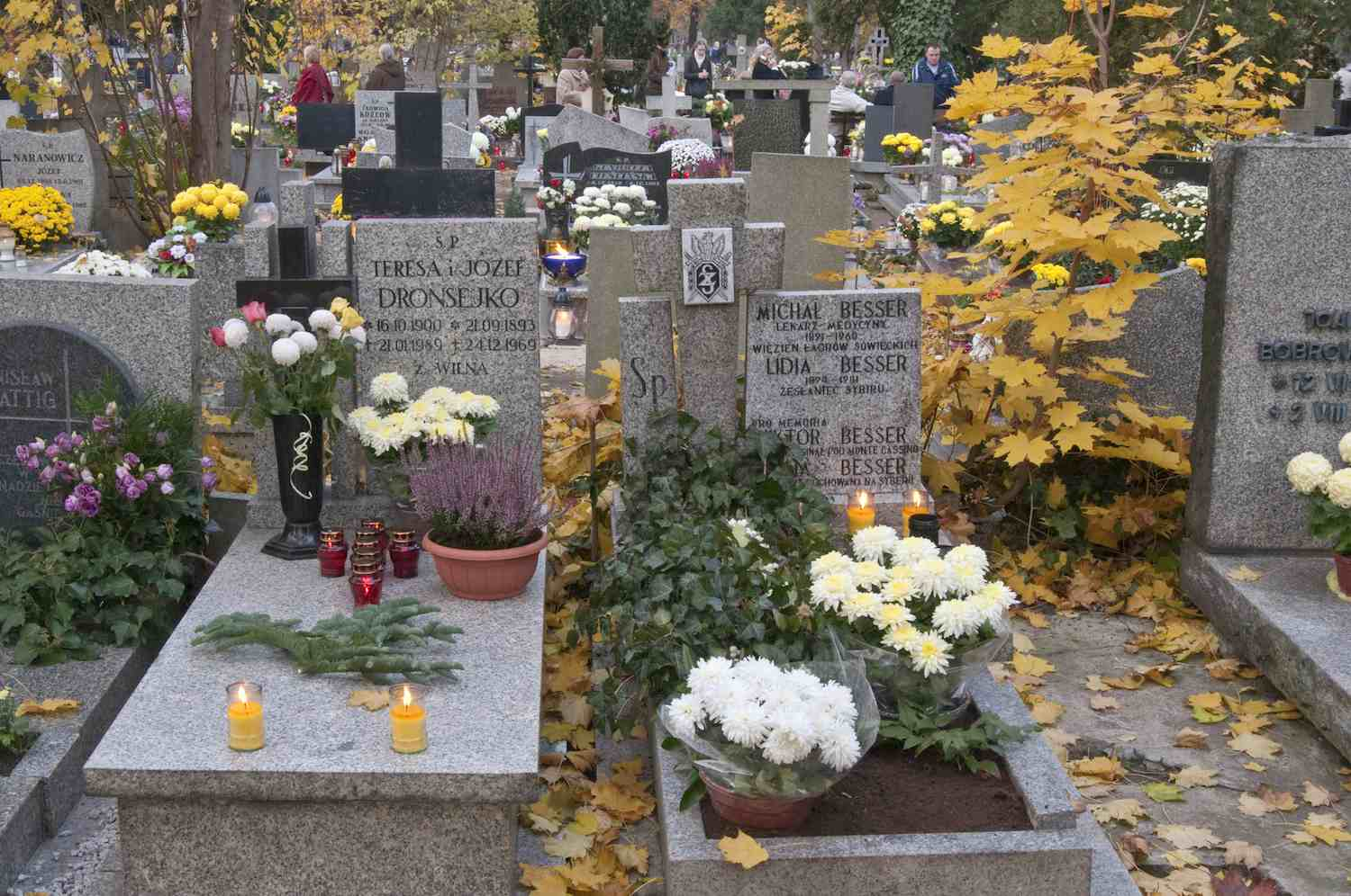 Cemetery with Memorial Flowers