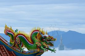 Taipei Temple Dragon