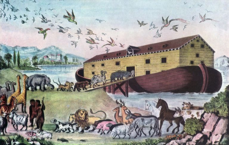The Animals of Noah's Ark