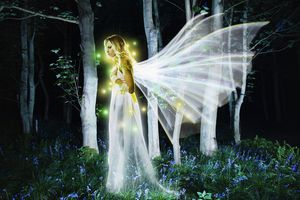 Drawing of an angel/fairy, in a forest, at night.
