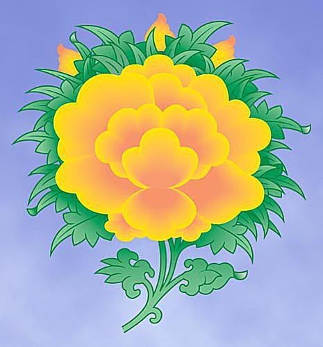 The Lotus Blossom
