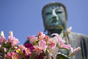 Giant Buddha of Kamakura and flowers