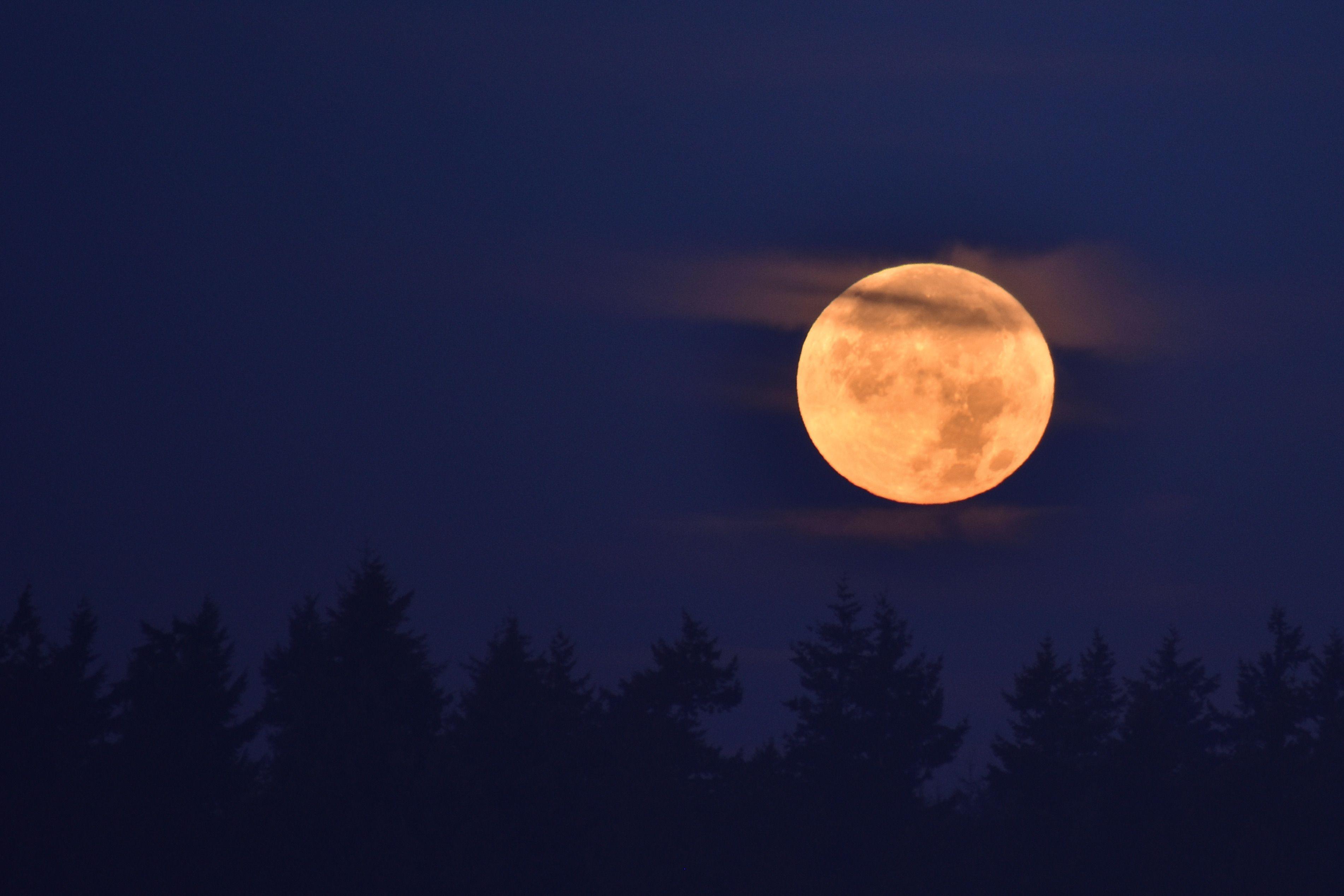 November Full Moon: Mourning Moon Magic