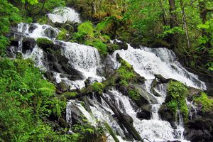 Waterfall of the river Landro in the eucalyptus forest of Chavin