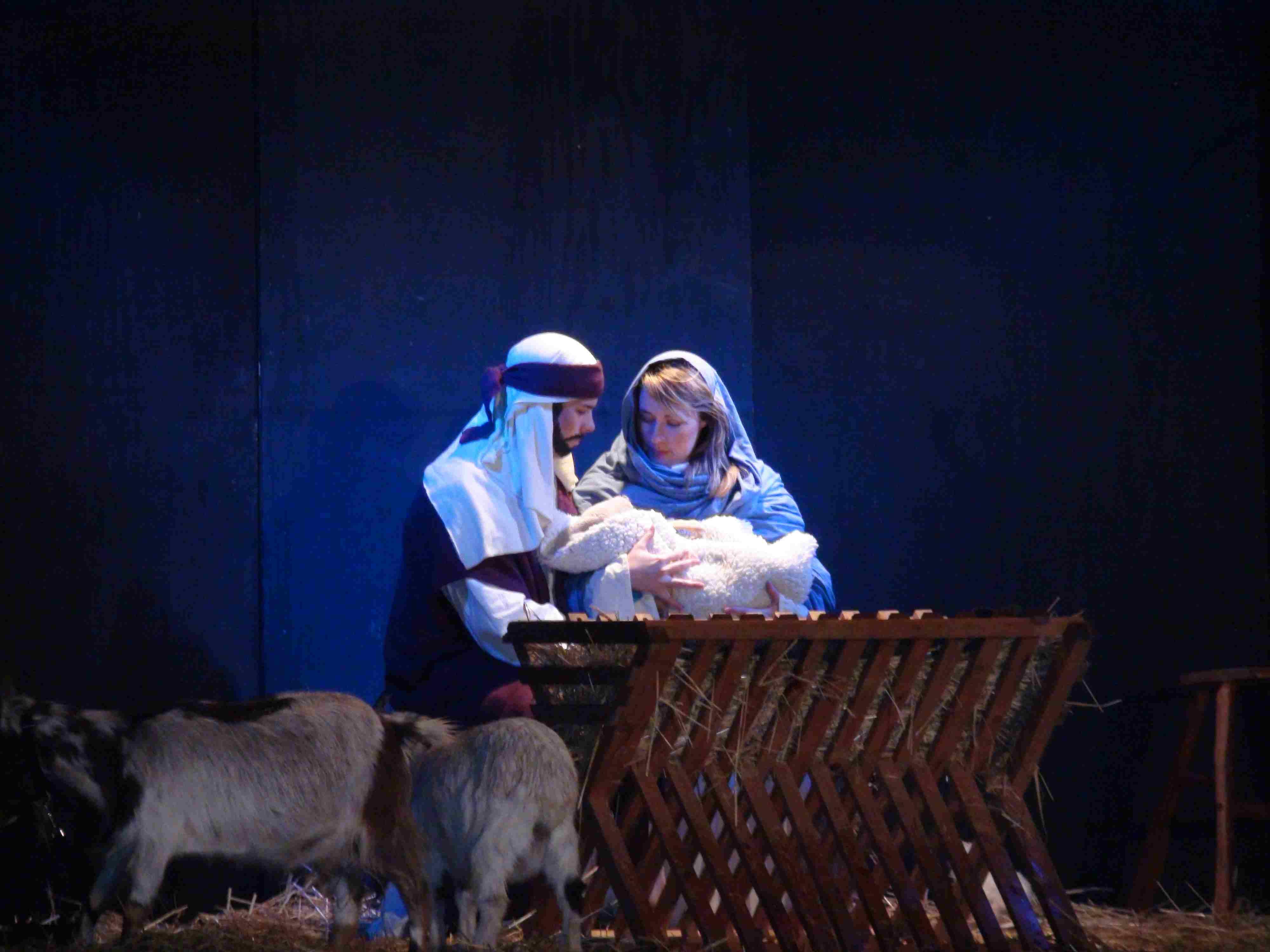 Canadian Nativity