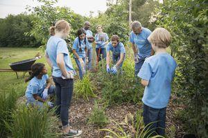 Volunteers talking in garden