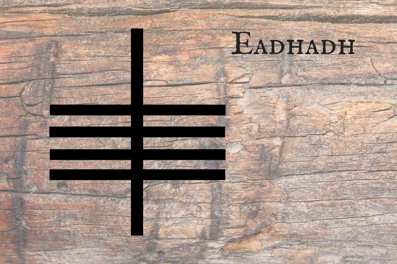 Eadhadh
