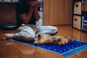 Man Praying With Cat On Mat
