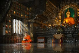 Novice monk reading the Holy book.