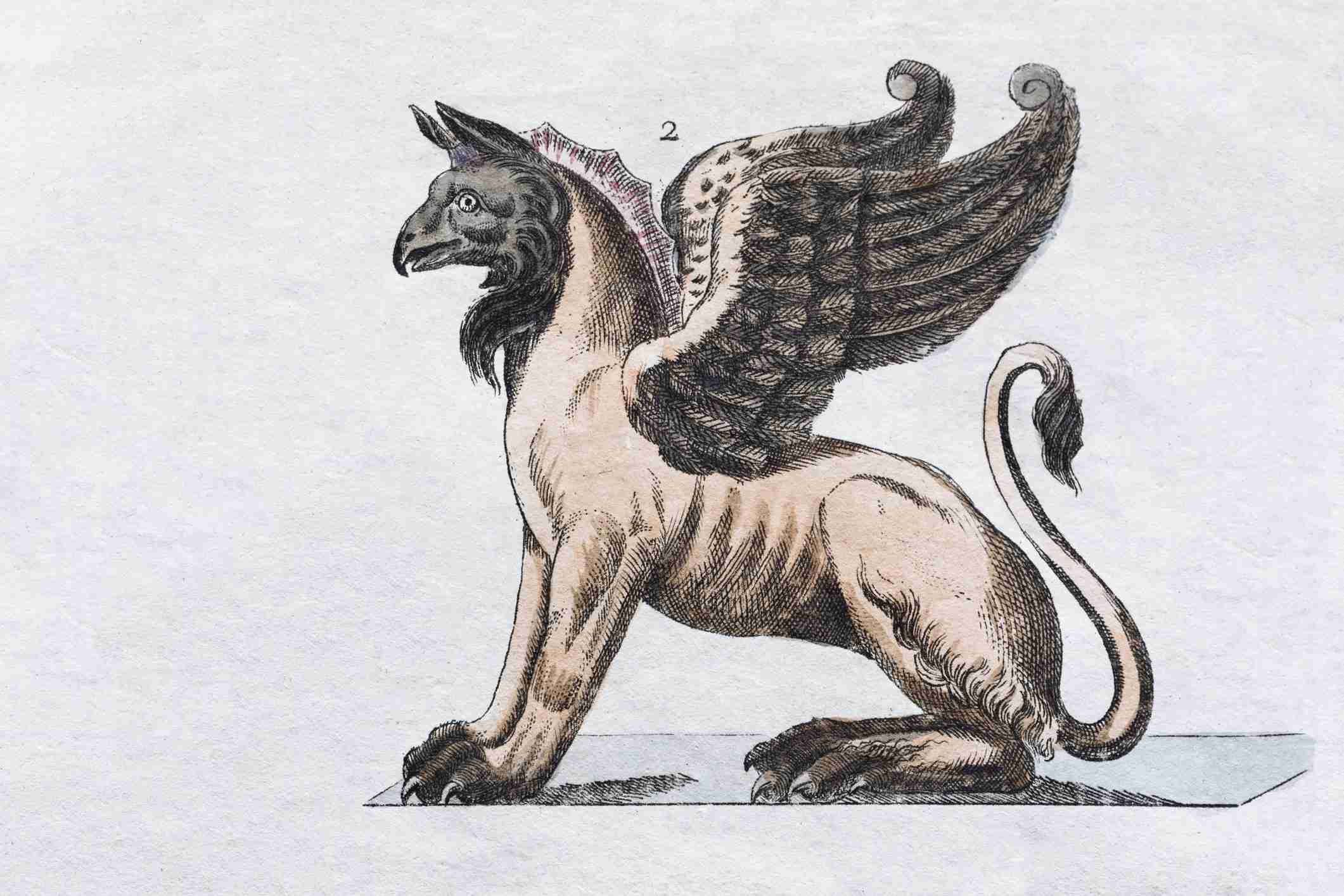Griffin, hand - colored engraving from Friedrich Justin Bertuch Picture book for children, Weimar 1792