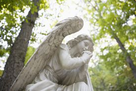 angel statue with trees in forest