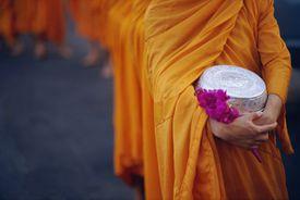 Saffron robe monks