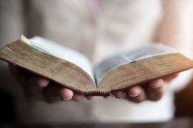 Woman reading holy bible.