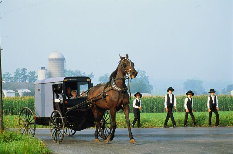 Amish Beliefs