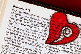 Love your neighbor as yourself Bible verse
