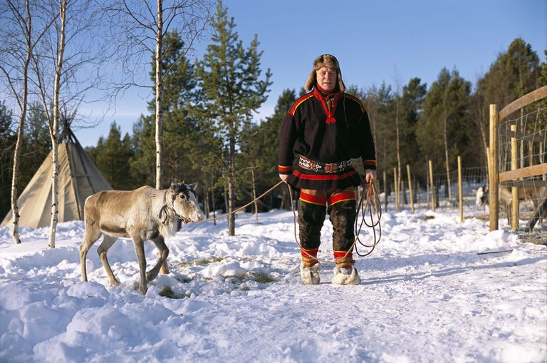 A reindeer breeder and a reindeer.