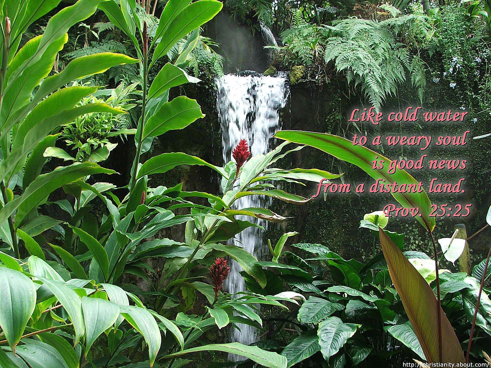 Cool Waterfall with bible verse