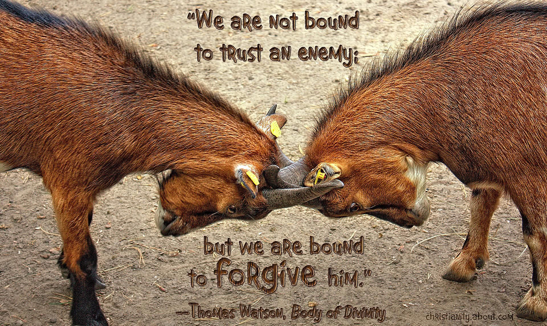 We Must Forgive Our Enemies