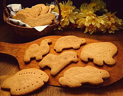 Cookies for a Noah's Ark Party