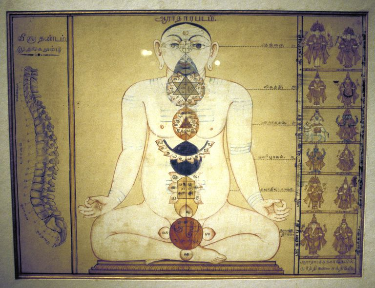 The plexuses of the human body, Tanjore, Tamil Nadu, c1850.