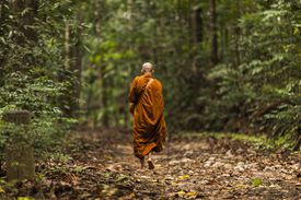 Buddhist monk walking towards one of the three Buddhist meditation hermitages at Udawatta Kele Sanctuary, Sri Lanka.