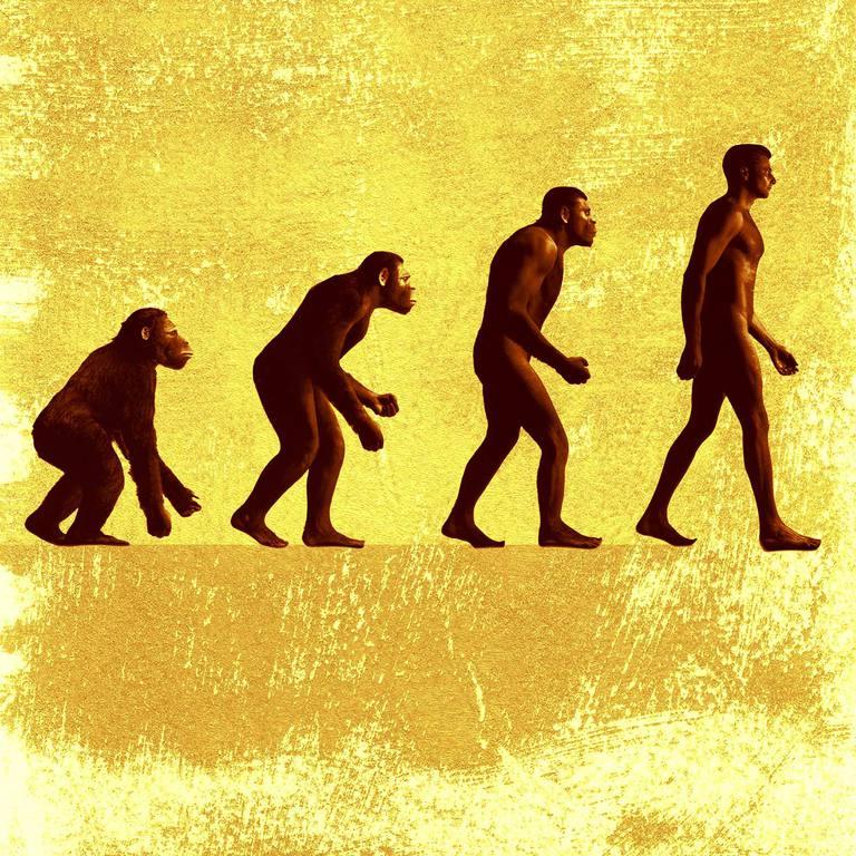 Evolution-Hominid-Progress-1500x.jpg