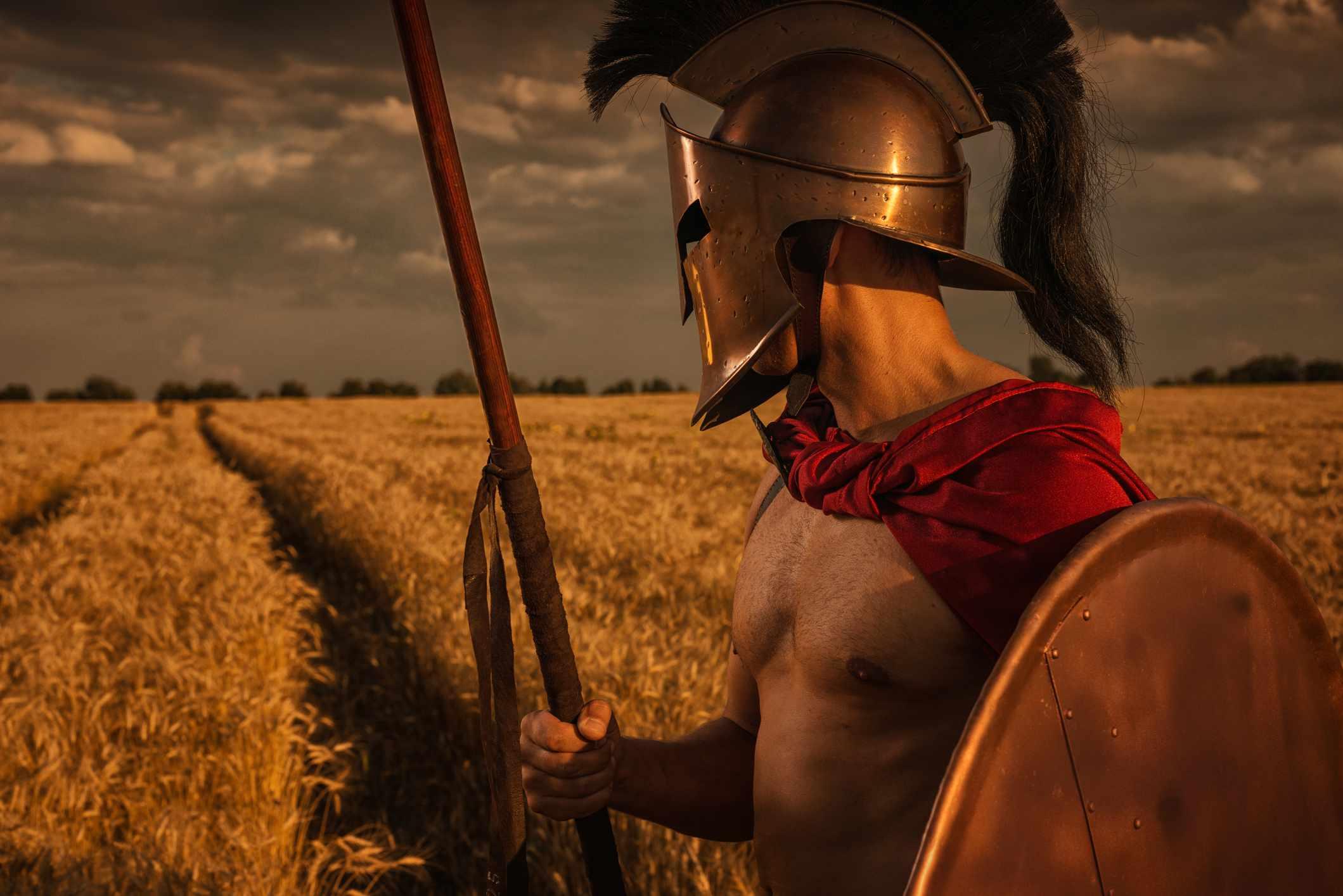 Spartan warrior in wheat field