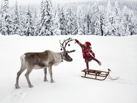 Girl Hanging Ornament on Reindeer