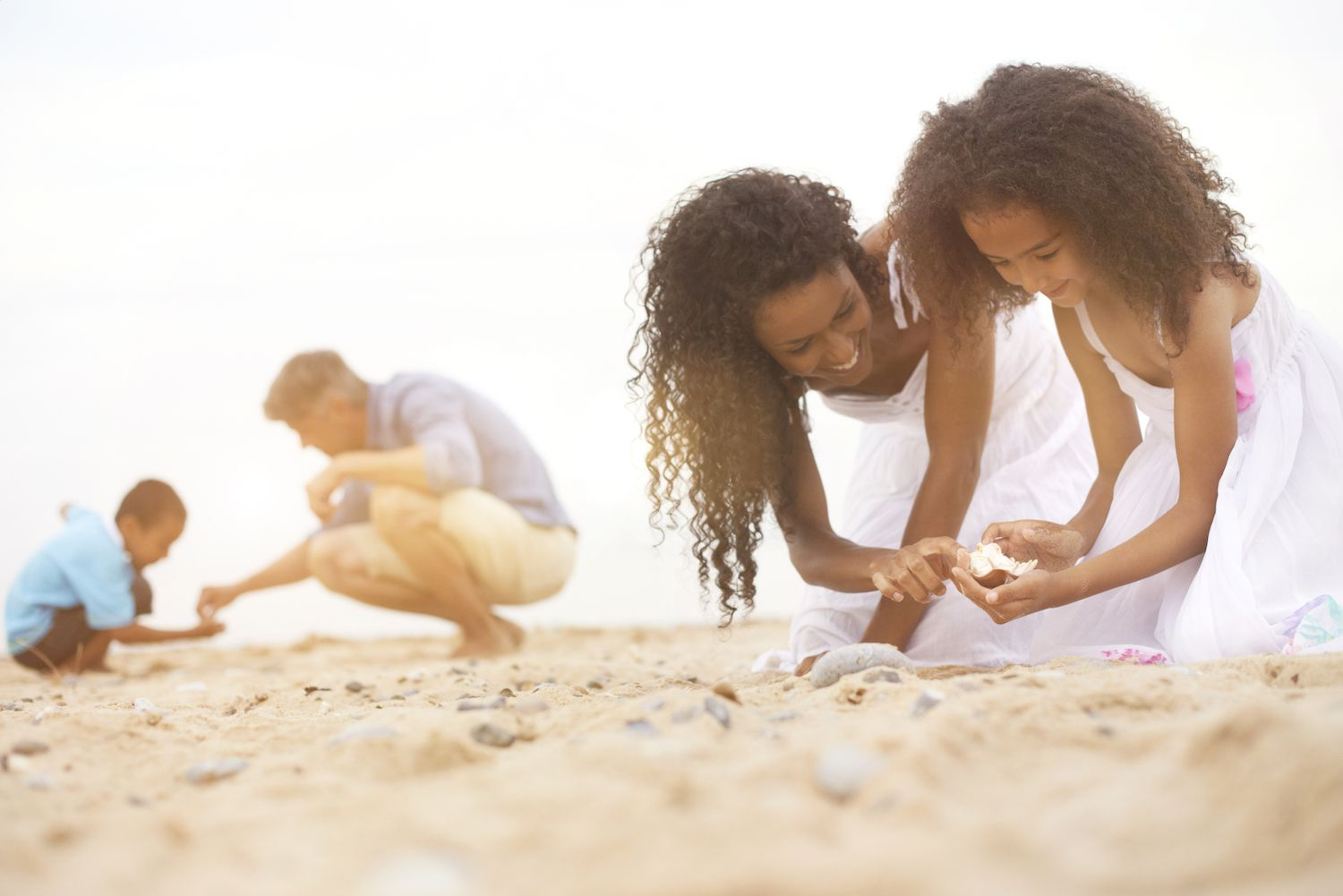 Family Collecting Beach Shells