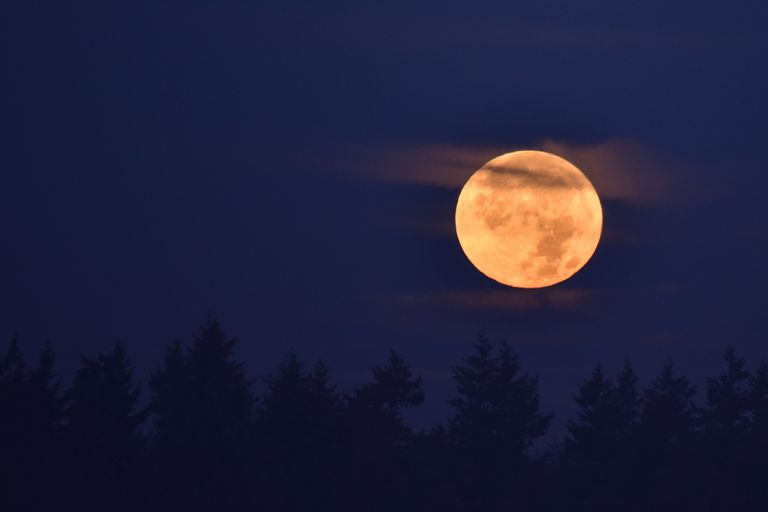 View of full moon