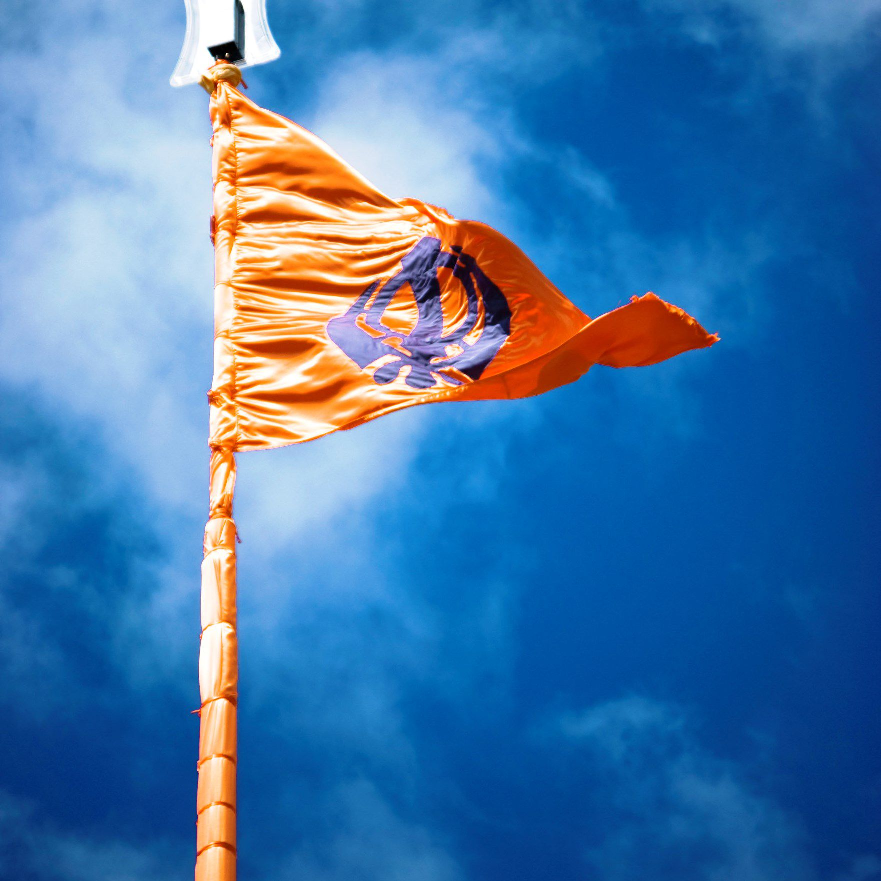 Definition of Nishan Sahib (Sikh Flag)
