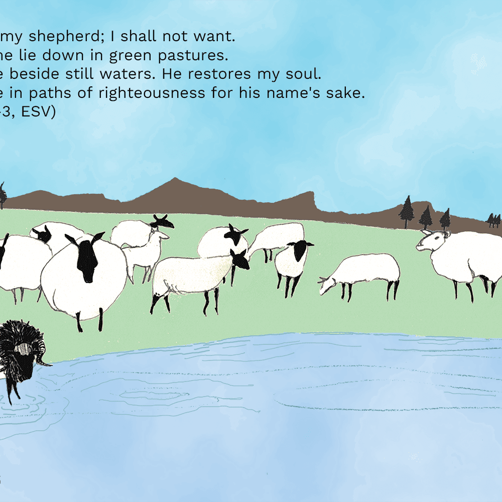 The Lord Is My Shepherd Lessons From Psalm 23