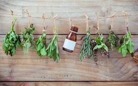 Herbs Tied Up While Hanging On Rope
