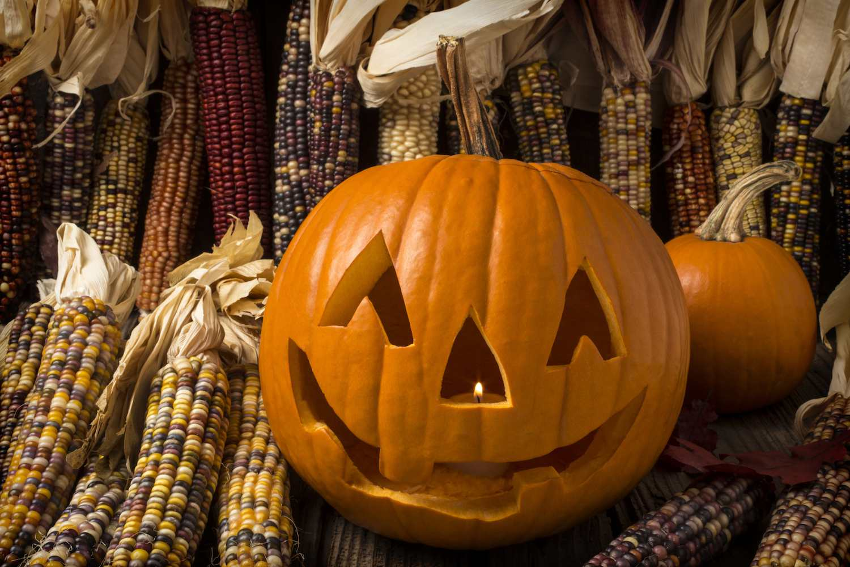 Pumpkins And Corn