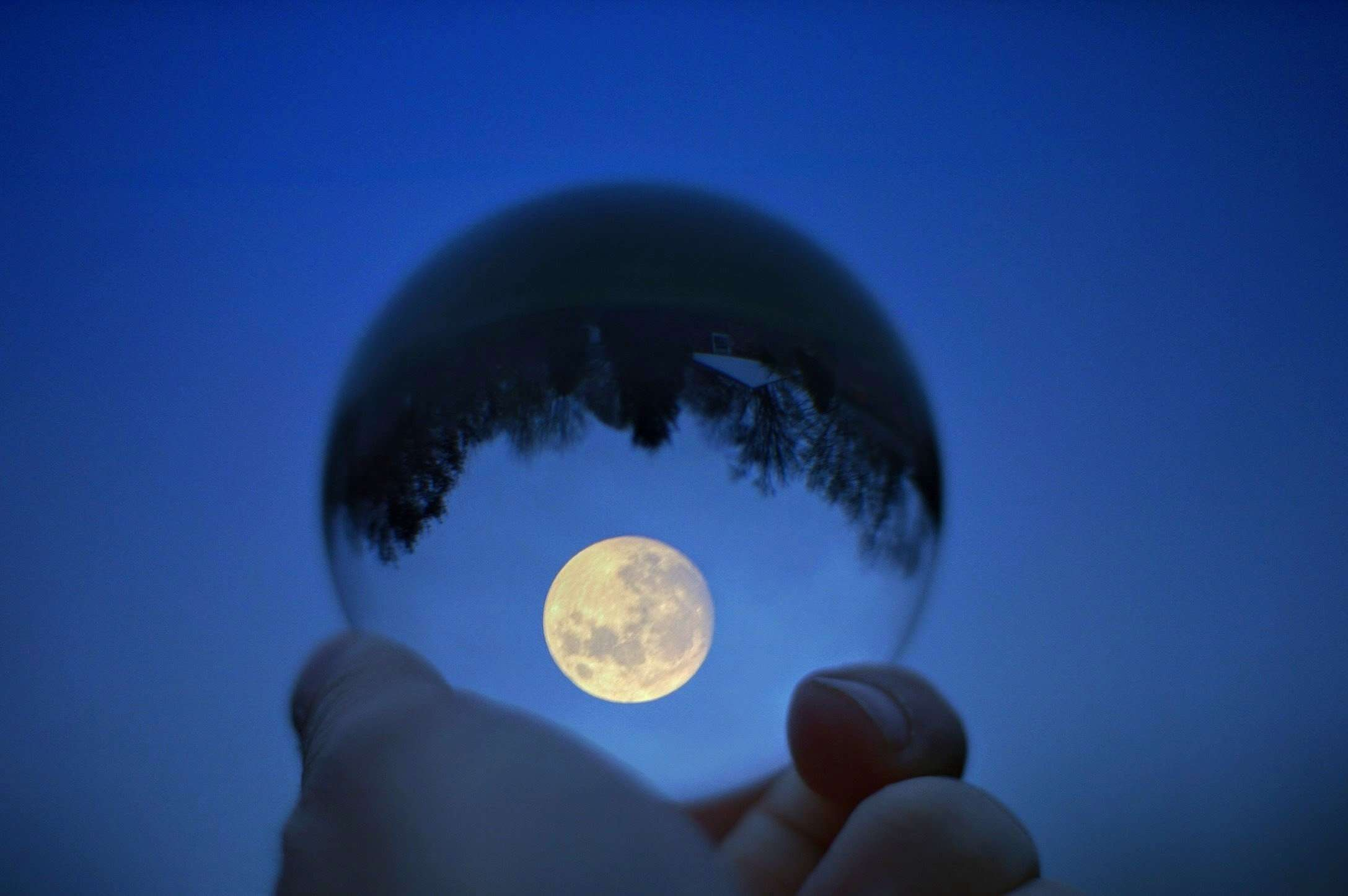 Close-Up Of Hand Holding Crystal Ball With Reflection Of Tree Against Moon In Blue Sky