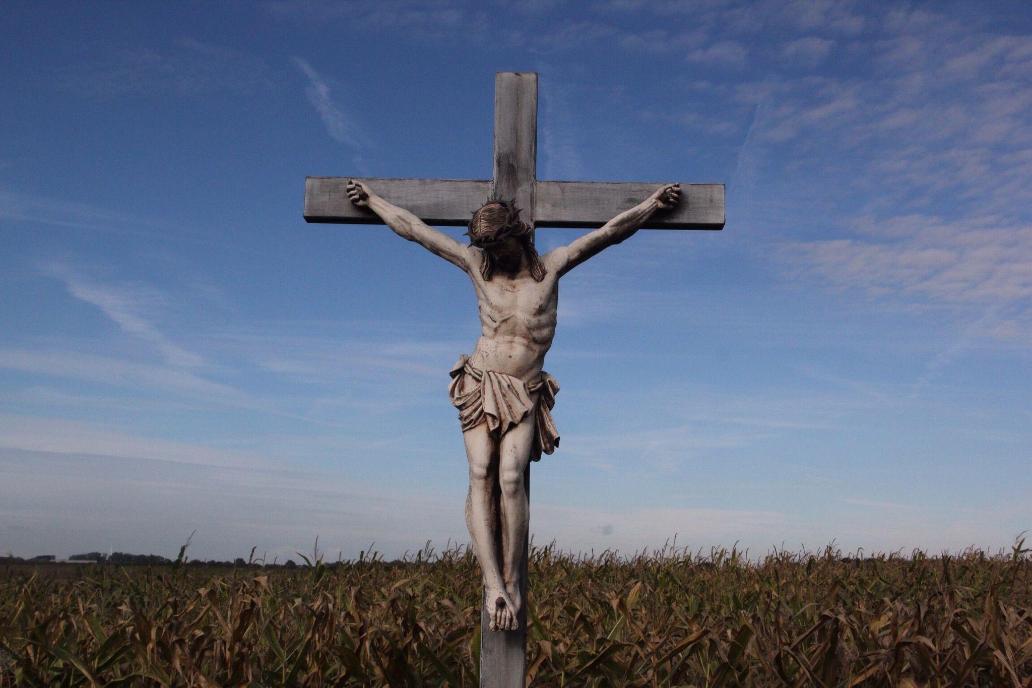 его огромные обмен на кресте картинки колена