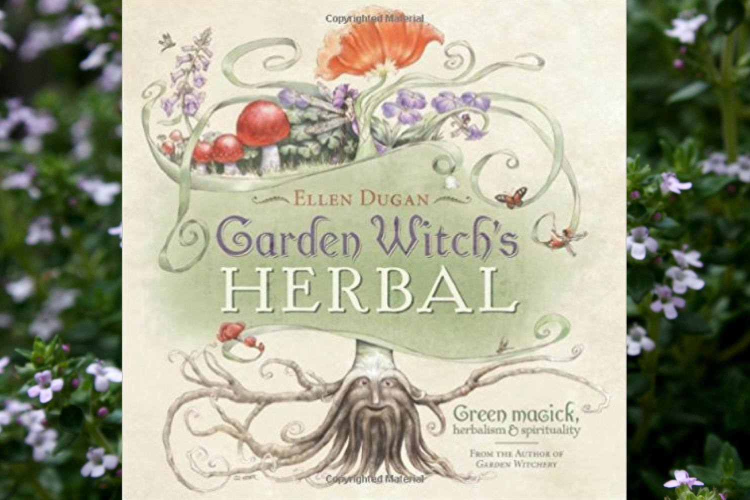 Witches Herbs