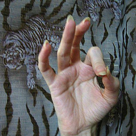 Mudras Photo Gallery - Hand Gestures