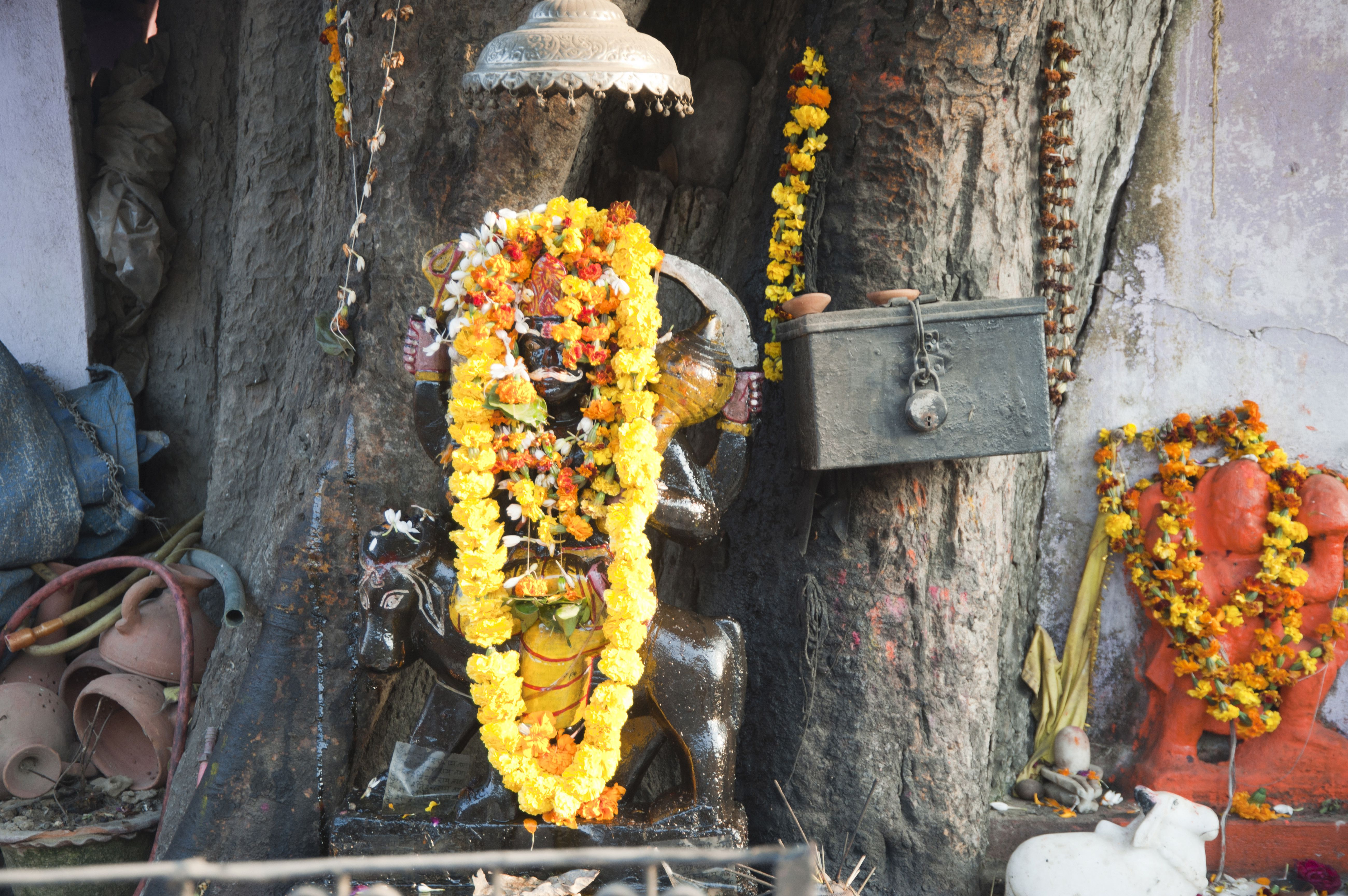 Lord shani dev and hanuman under the tree, allahabad, uttar pradesh, India