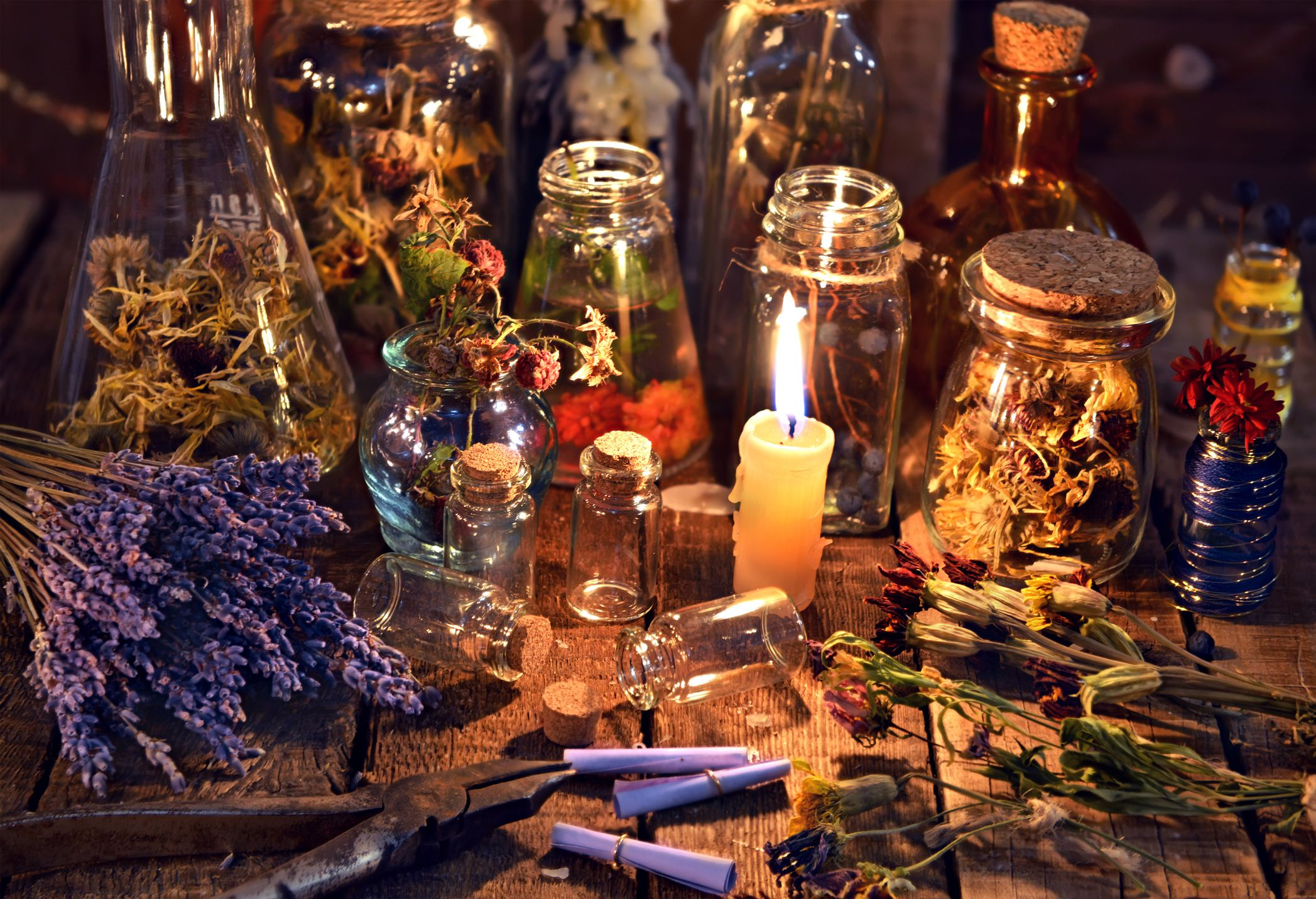 Paganism and Wicca cover image