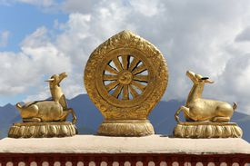 Golden Dharma Wheel