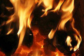 burning fire and hot coals