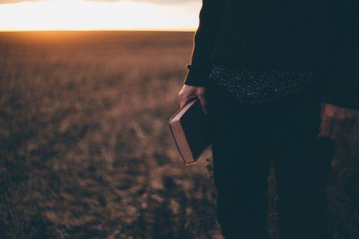 Person holding Bible looking at horizon