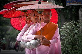 Burmese Buddhist nuns on an alms round.
