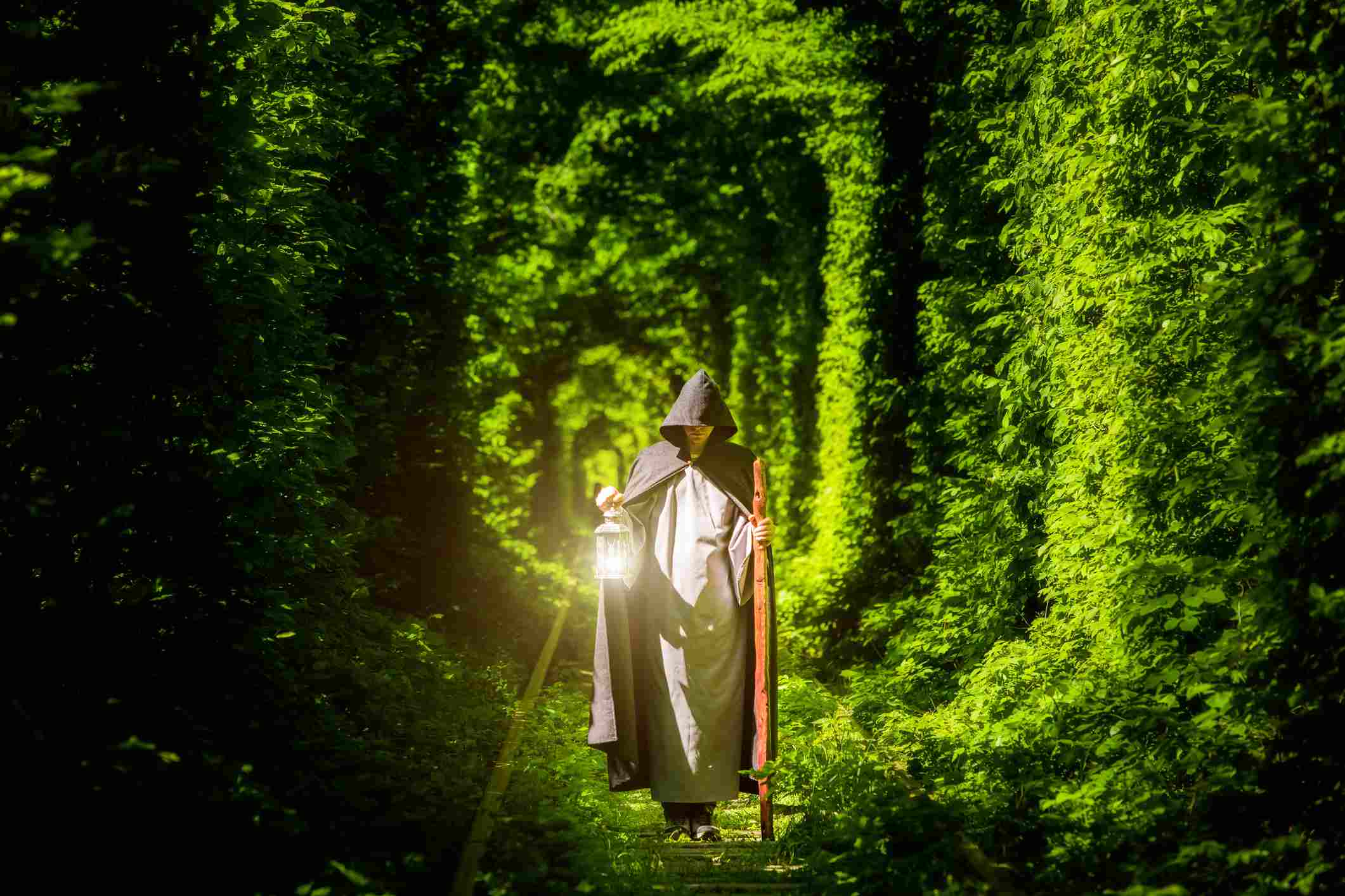 Man with lantern and staff in woods