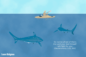 A man rows a small boat in a body of water. Beneath him, two sharks swim. The text reads,