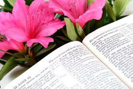 Risen Lord passage, open Bible. Easter Sunday. Scripture. Christianity, religion.
