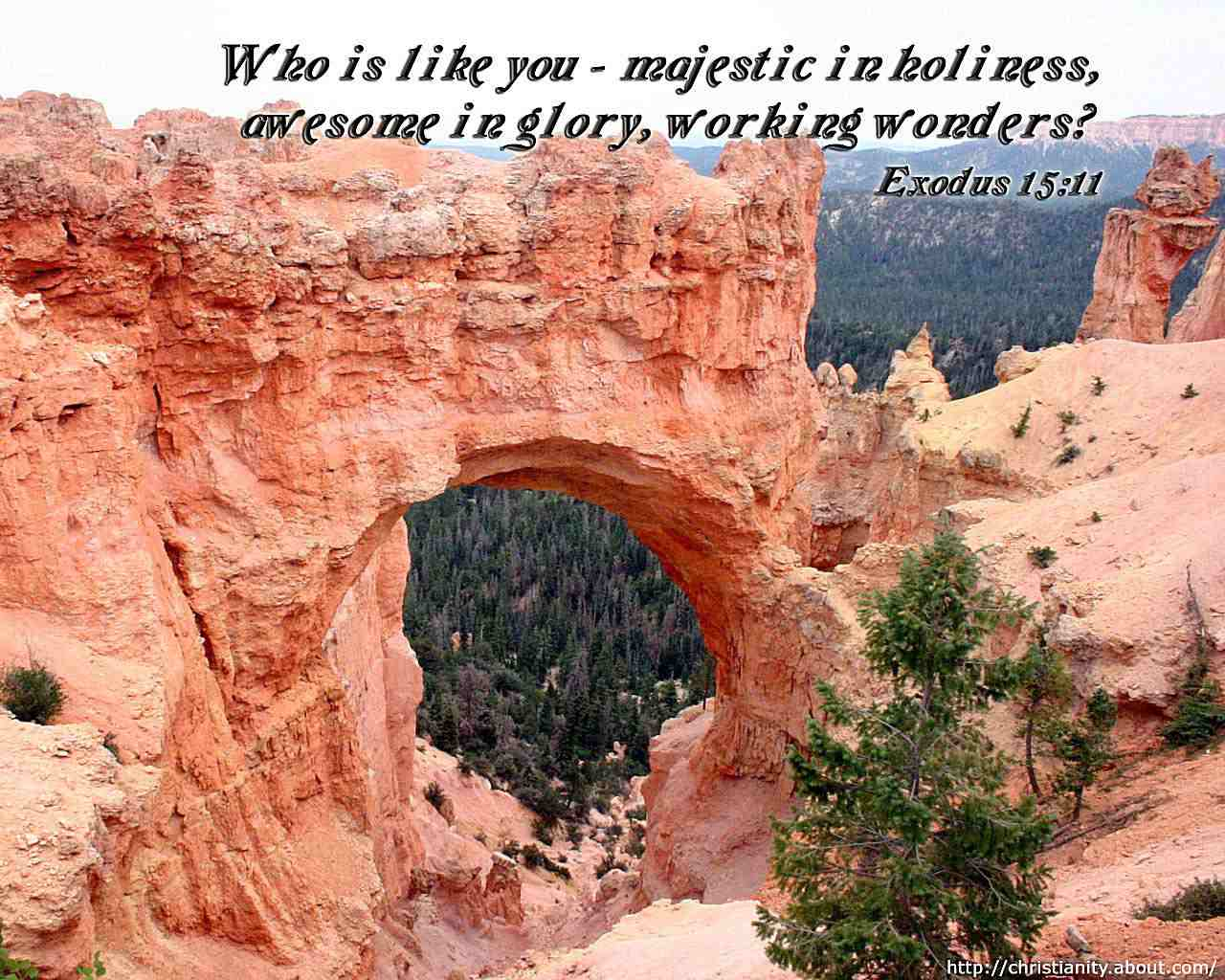 Majestic Wonders with bible quote