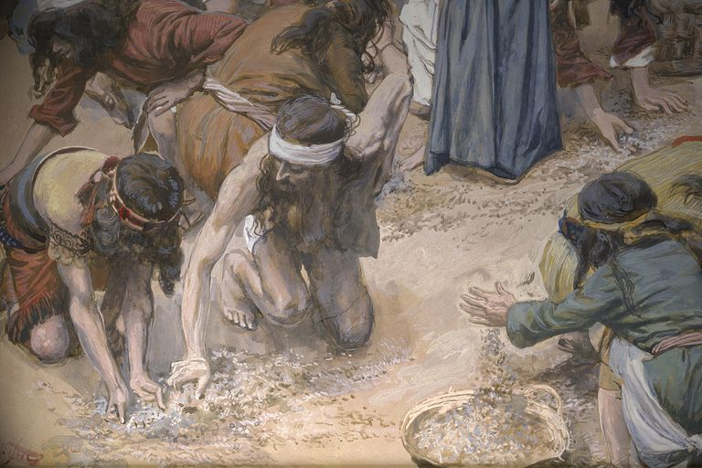 What Is Manna in the Bible?